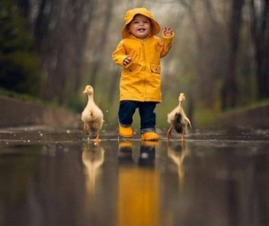 Walking the Lessons of Life