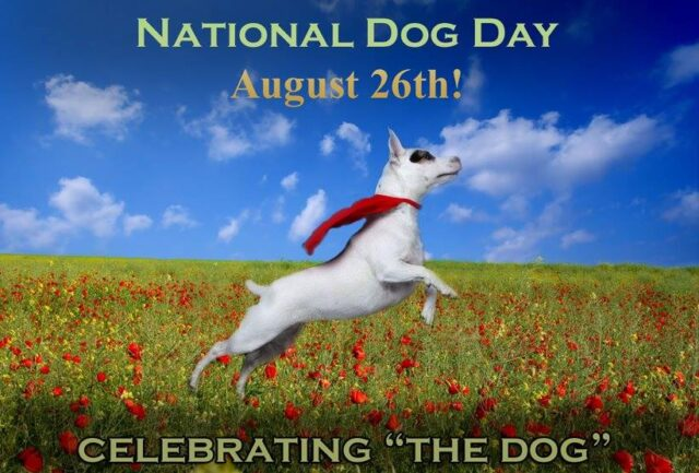 National Dog Day
